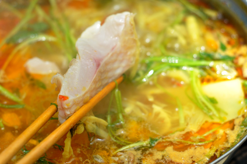 Image result for lẩu cá diêu hồng